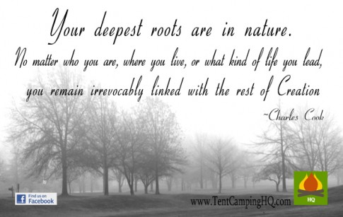 Your deepest roots are in nature. No matter who you are, where you live, or what kind of life you lead, you remain irrevocably linked with the rest of creation.