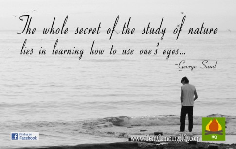 The whole secret of the study of nature lies in learning how to use one's eyes.
